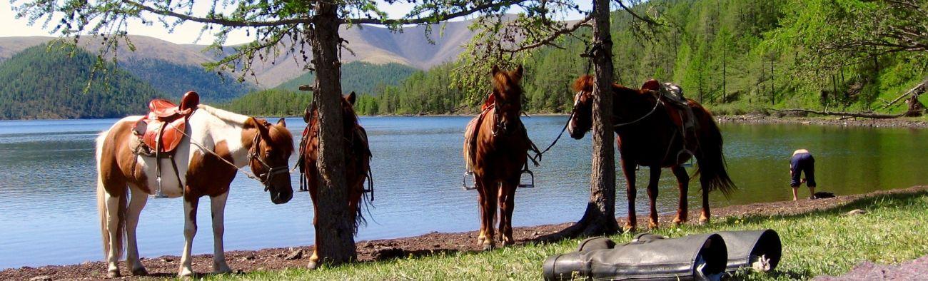 Plage de Naimain Nuur 8 lacs à 2400 m à cheval