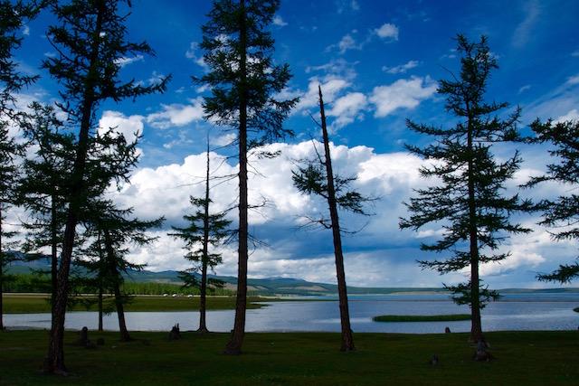 La rive boisée lac Khovsgol Mongolie