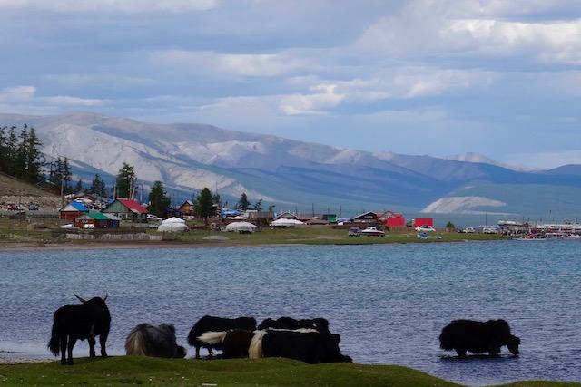 Rive sud du Khovsgol Mongolie
